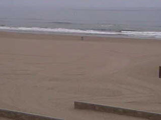US open surfing championship web cam